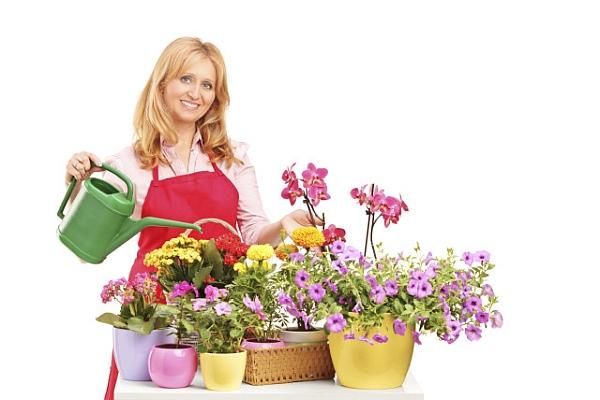 грижи за растенията