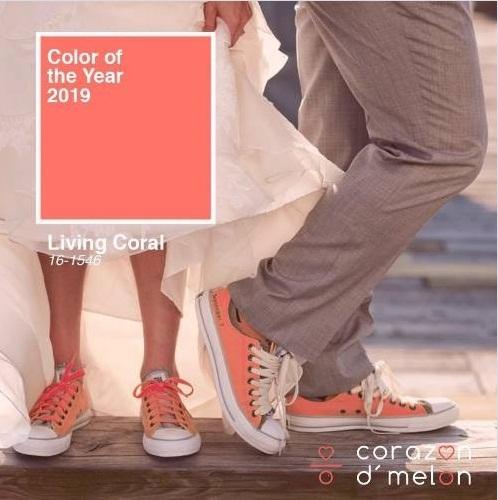 модерен цвят 2019